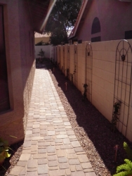 Chandler Backyard Landscape Paver Walkway