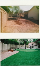 Arizona Backyard Design Artificial Grass