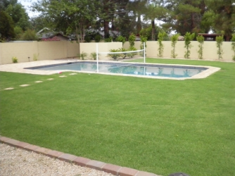 Phoenix Landscape Design Artificial Turf