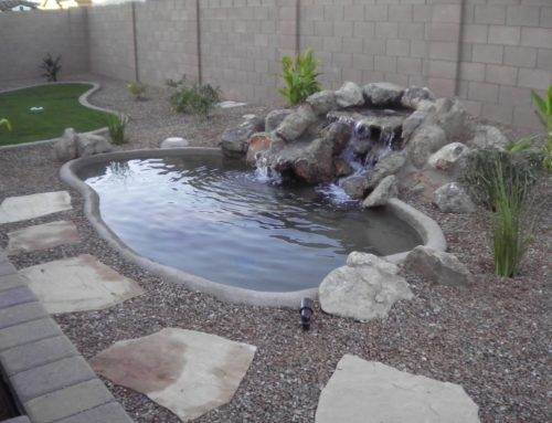 Chandler Backyard Landscape Water Feature