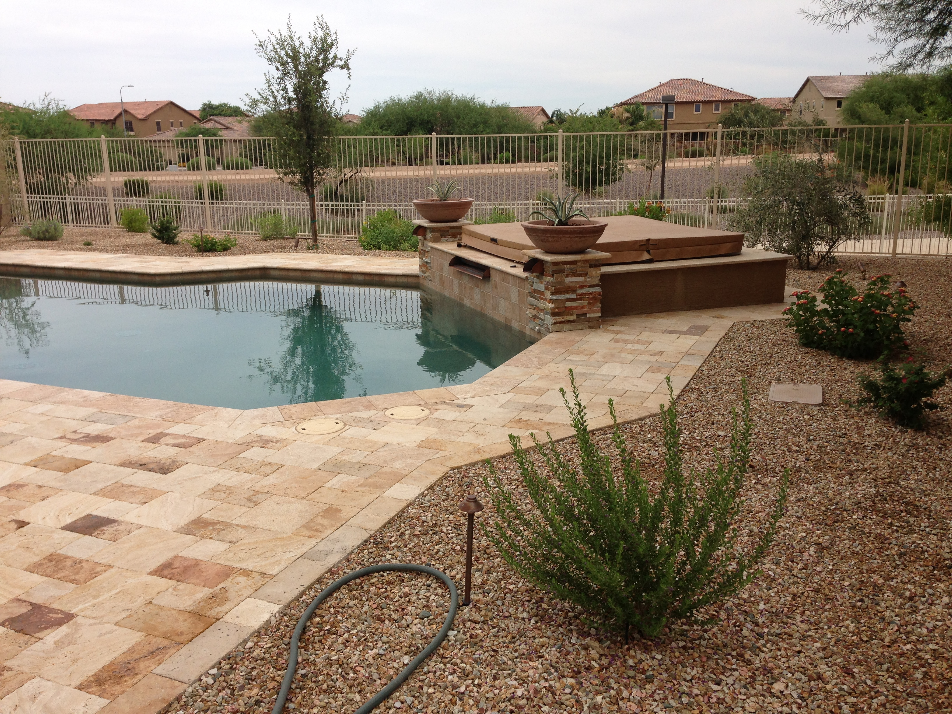 Poolside Plants For Arizona Landscape Design