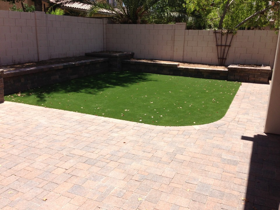 Chandler Backyard Landscape