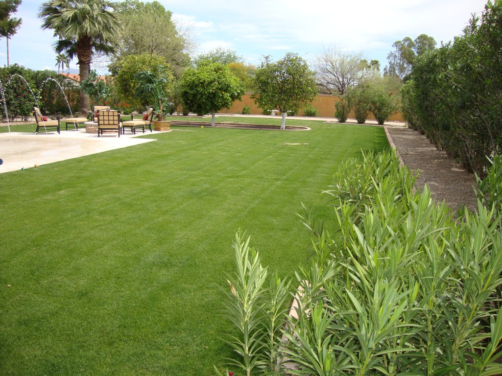 Is Your Arizona Landscape Design Ready For A Green Spring?